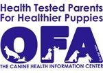 OFA Canine Health Information Center